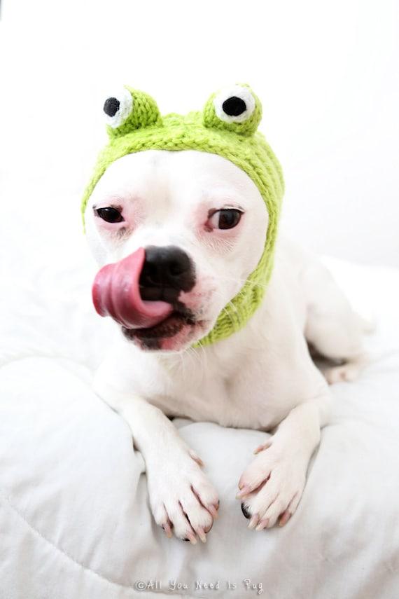 Frog Dog Hat - Pug Hat - French Bulldog Hat - Dog Costume - Dog Clothing - Pet Accessories - Dog Lover Gift