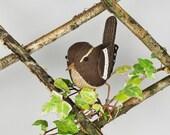 FABRIC BIRD - Wren Sculpture - Made to Order