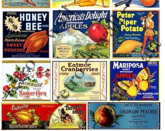 PRINTED Produce Crate Labels Kitchen ClipArt 9 Mini Fruit Crate Labels Butterfly Bikini Citrus Label Kitchen Decoration Vintage Clip Art 47a
