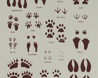 Animal Tracks Screen Print Poster