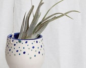 Polka Dotted Hanging Planter for Air Plant
