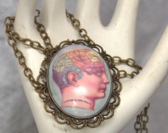 Phrenology cameo pendant necklace 30x40mm FLAT RATE SHIPPING