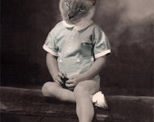 OBE, Vintage Cat, Siamese Cat, Anthropomorphic, Altered Photo, Whimsical Cat Art, Photo Collage, Animal GIft idea, Unusual Art, Wall Hanging