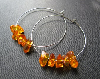 Amber Earrings - Baltic Amber Jewelry - 50mm Hoop Earrings - Amber Bead Earrings