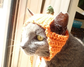 Pumpkin Cat Hat Cat Costume for Cat Outfit Cat Clothes Pet Hat Pet Costume Pet Outfit Pet Clothes I Love Cats Hat for my Cat Halloween Cute