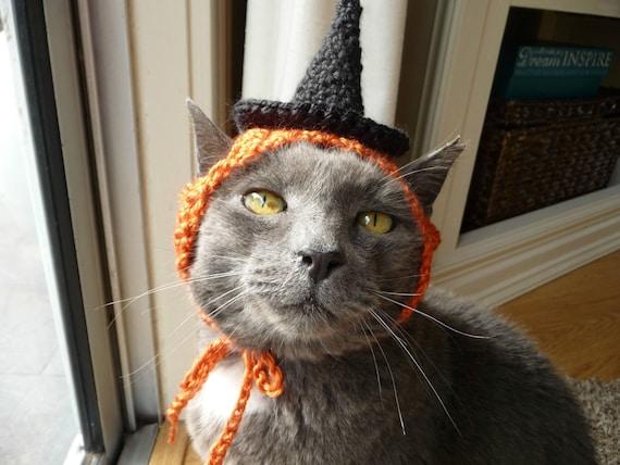 Crochet Hat Cat