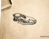 Wolf Skull Rubber Stamp - 2 x 2 inches