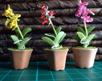 Set of 3 gorgeous orchids - Fimo flowers in terracotta pots