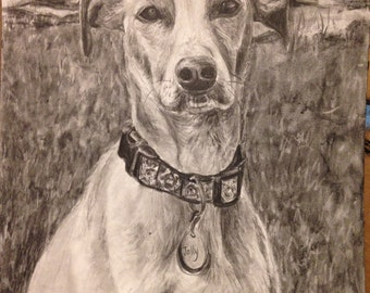 Pet portrait from photo , pencil or paint of  pets or people