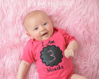 Baby Girl Monthly Chalkboard Bodysuit - Hot Pink