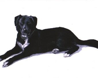 Black Labrador art print, Black Lab art images,drawing,Labrador wall art /fine art/in art,I love Labradors,Labrador gifts,Labrador retriever