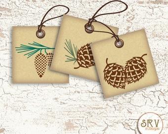 9 Pinecone Gift Tags, Woodland 2.5 x 2.5 Hang Tags, Thank You Tags, Product Tag, Holiday Greetings, Choose Ribbon Color