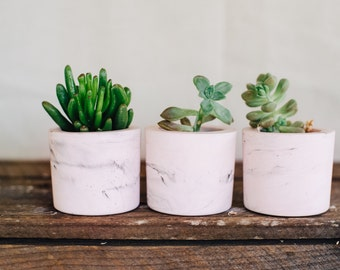 Set of 3 blush marble cement mini planters