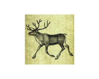 CARIBOU REINDEER Rubber Stamp~Large Unmounted Cling Stamp~Vintage Christmas Illustration~DIY Card Making~Arctic Tundra Wildlife (56-01)