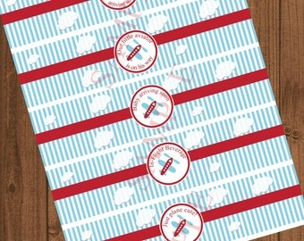 Airplane Baby Shower Water Bottle Label, Airplane Baby Shower Decorations,  Instant Download