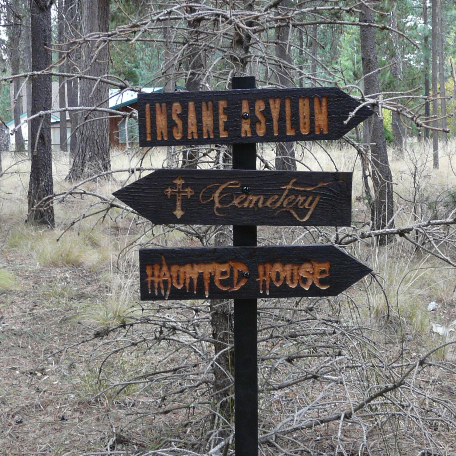 decisions 3 halloween lawn ornament sign haunted house cemetery insane asylum creepy scary horror decoration cedar wood holiday decor - Cemetery Halloween Decorations
