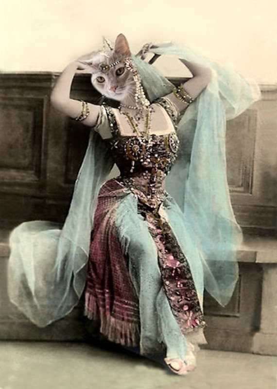 Thema, Cat Print, Anthropomorphic, Vintage Cat, Altered Photo, Whimsical Art, Photo Collage,Unique Gift Idea, Egyptian Cat, Unusual Art