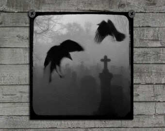 Graveyard, Spooky, Blackbirds, Goth, Black And White Photography, Ravens, Monochrome Art, Gothic, Tombstones In Fog - Halloween Mingle