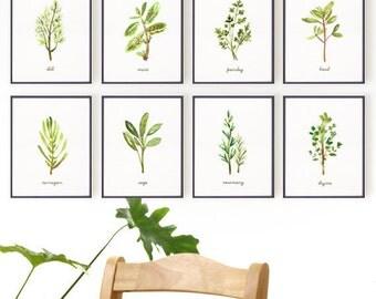 Herb print watercolor painting, Botanical chart, Kitchen art, Set of 8 prints, Botanical print set, Living room art, Spring art, Green leaf