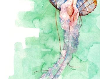"Jellyfish Painting - Print from Original Watercolor Painting, ""Jellyfish"", Beach Decor, Beach House, Seashore, Under the Sea"