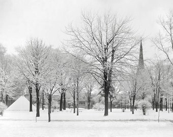 Winter in the Park, 1915. Vintage Photo Digital Download. Black & White Photograph. Trees, Snow, Storm, Nature, 1910s, Historical.