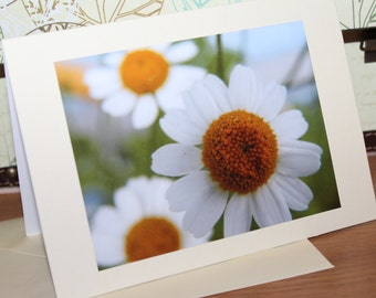 Greeting Card (Left Blank) Daisy in Somerset Handmade by Myself