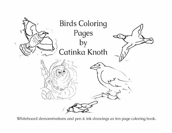 Birds Coloring 10 page pdf book