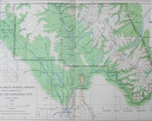 1900 Map: Flathead Forest Reserves Montana MT. Red Fir & Lodgepole Pine. Julius Bien Antique Lithograph. Original. Over 100 years old.