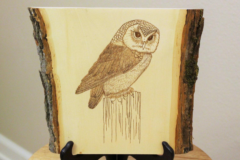 Wooden Owl Wall Decor : Owl decor wooden wall art rustic signs