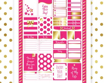 All Hot Pink Pro Printable Planner Stickers for Erin Condren (EC) Life Planner