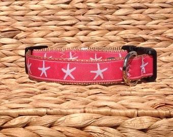 Starfish Dog Collar