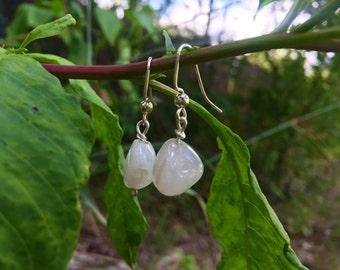 Moonstone Dangle Crystal Earrings