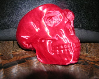 Homo Erectus Skull 3D Printer Produced