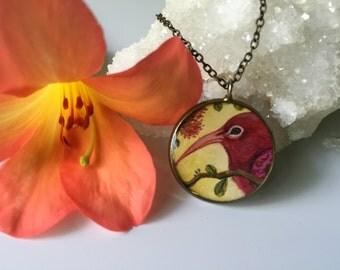 I'iwi Bird: Native Hawaiian Honeycreeper Necklace