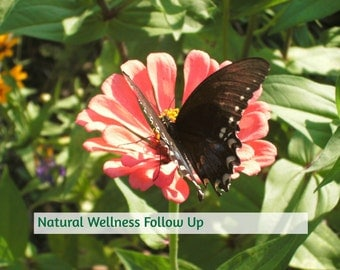 Natural Wellness Consulation Follow Up