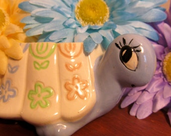 Myrtle the Turtle and Her Daisies Need a Home!