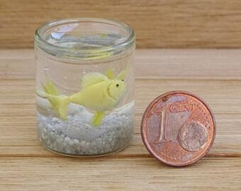 Aquarium . Small fish in the aquarium. Aquarium of the dollhouse . Gold fish. Aquarium in 1/12 scale .