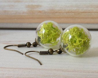 Earrings with green moss, earrings with lichens