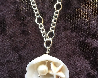 Real shell and pearl howlite necklace