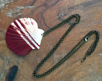 Scallop Seashell Necklace - Maroon