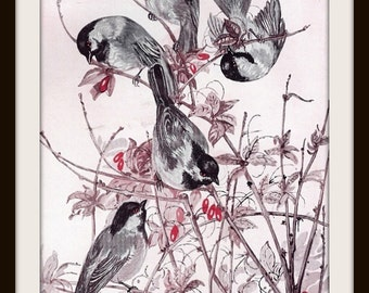 Chickadee Book Print (1932): Titmouse Family, Frameable Wall Art, Nature Theme Nursery, Black Grey Brown Pink, Bird Illustration, Picture