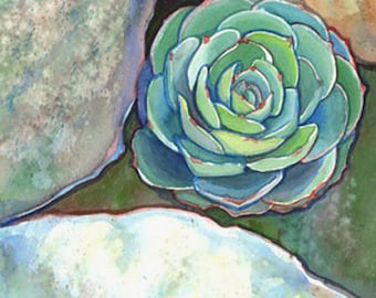 Succulent Echeveria Art Print/ Botanical Watercolor Limited Edition Giclee