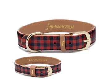 The Hipster Pup- Dog FriendshipCollar and matching friendship bracelet