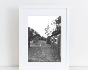 Barn, Photography, Print, Black & White, Side View
