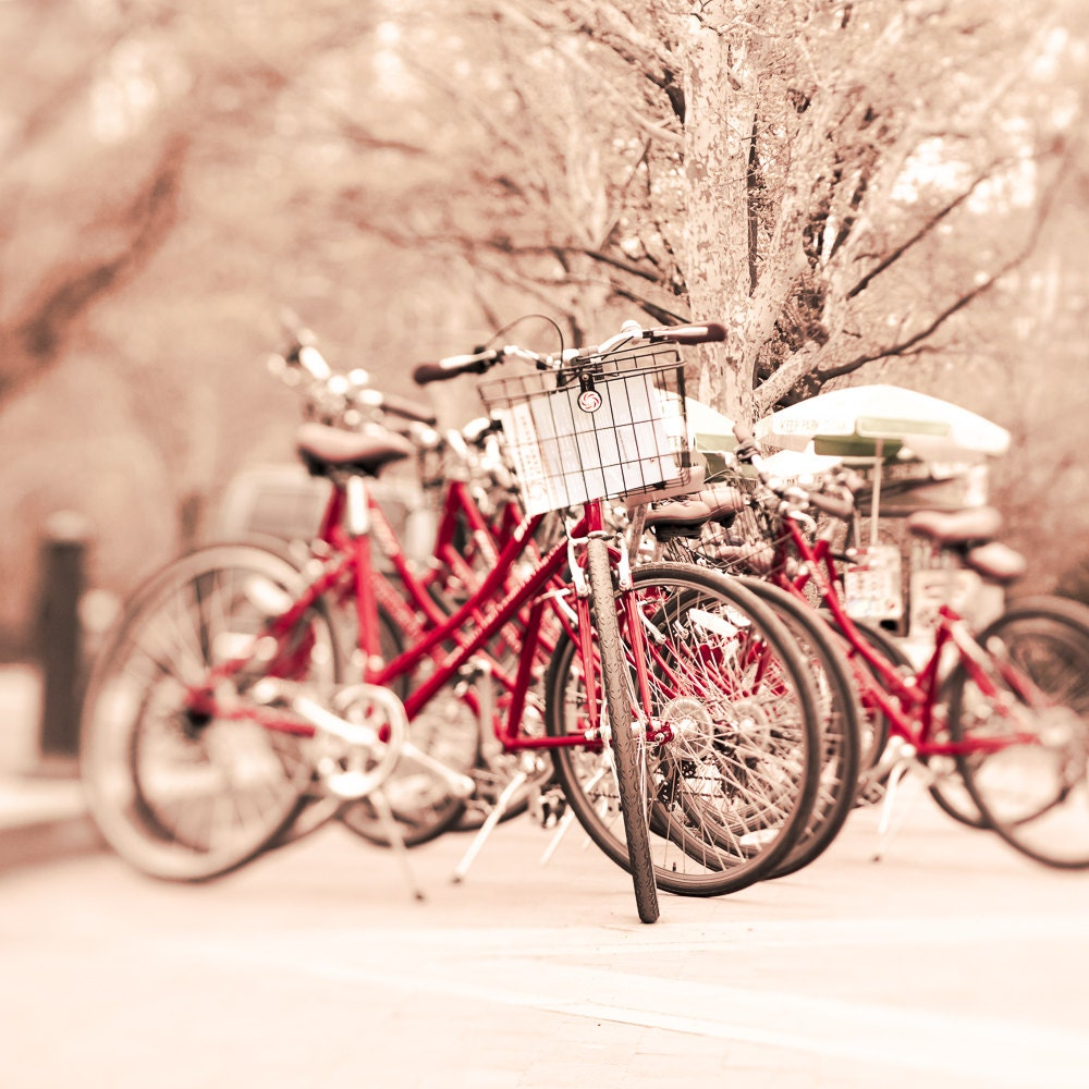 retro wall art boy nursery decor red bike print bicycle photograph