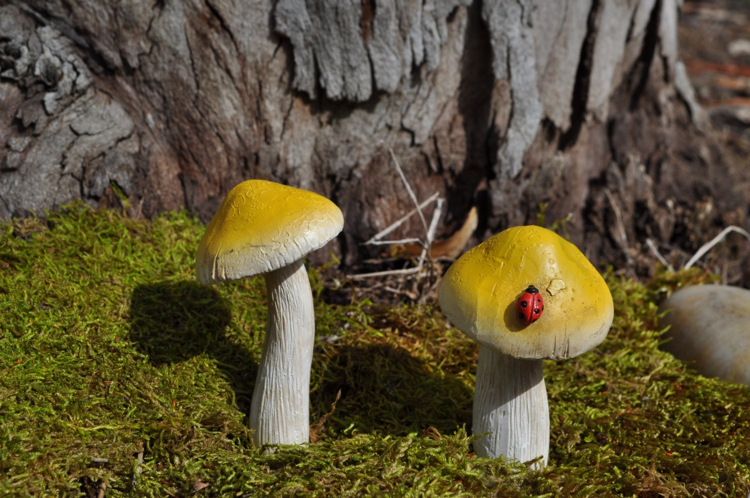 Fairy Garden Yellow Mushrooms