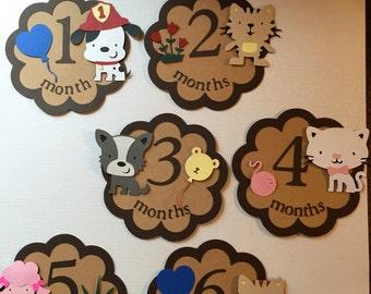 Monthly Baby Sticker , Baby Month Sticker,  Milestone Sticker, Month by Month Baby Sticker, Handmade