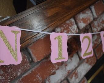 Monthly Photo Banner, 1st Birthday Decor, Pink & Gold Birthday Banner, Gold Glitter Banner, Glitter Birthday Banner, Birthday Banner