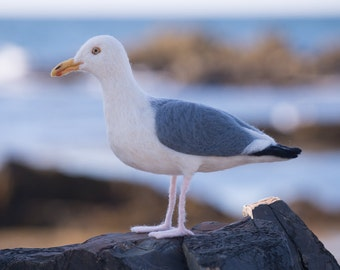 Seagull wool felted handmade bird