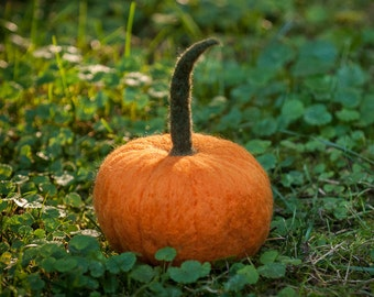 Pumpkin needle felted handmade wool-Large size